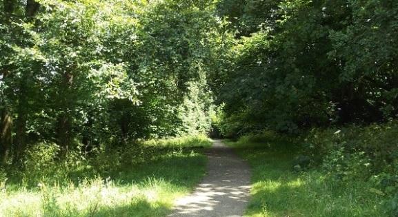 Tregoniggie path
