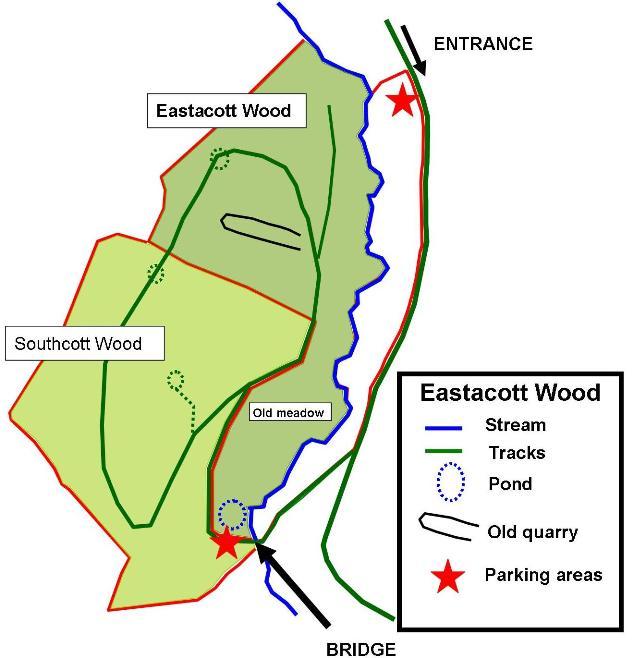 Eastacott Wood map 0715